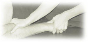 Neurological Physiotherapy Treatment for Hands and Arms